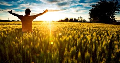Viața și fericirea noastră! (II)